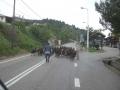 griechenland-mai-2008-32