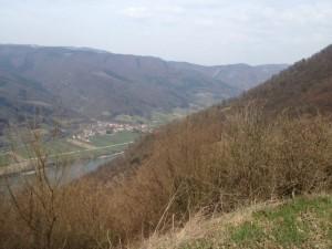 Blick von der Burgruine Aggstein